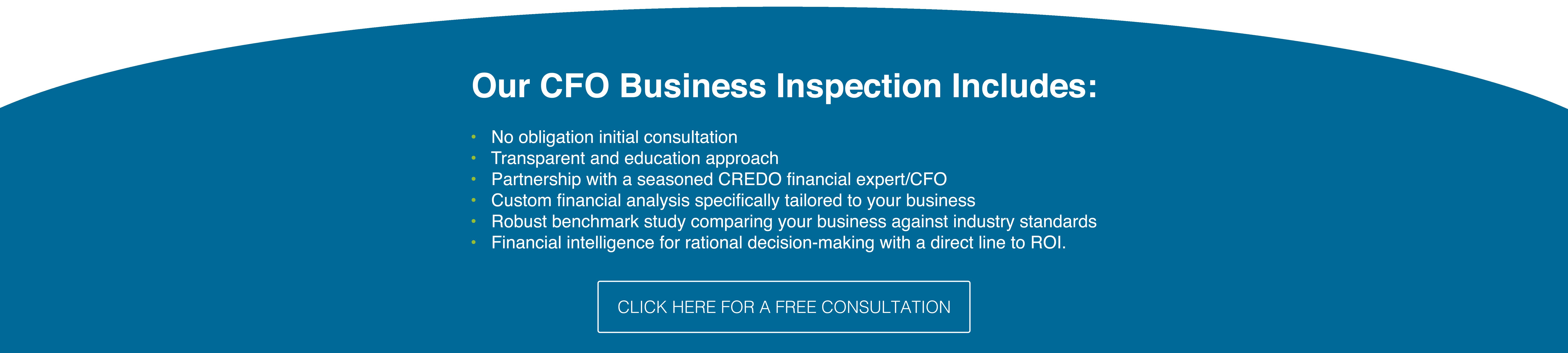 CFO Graphic-01